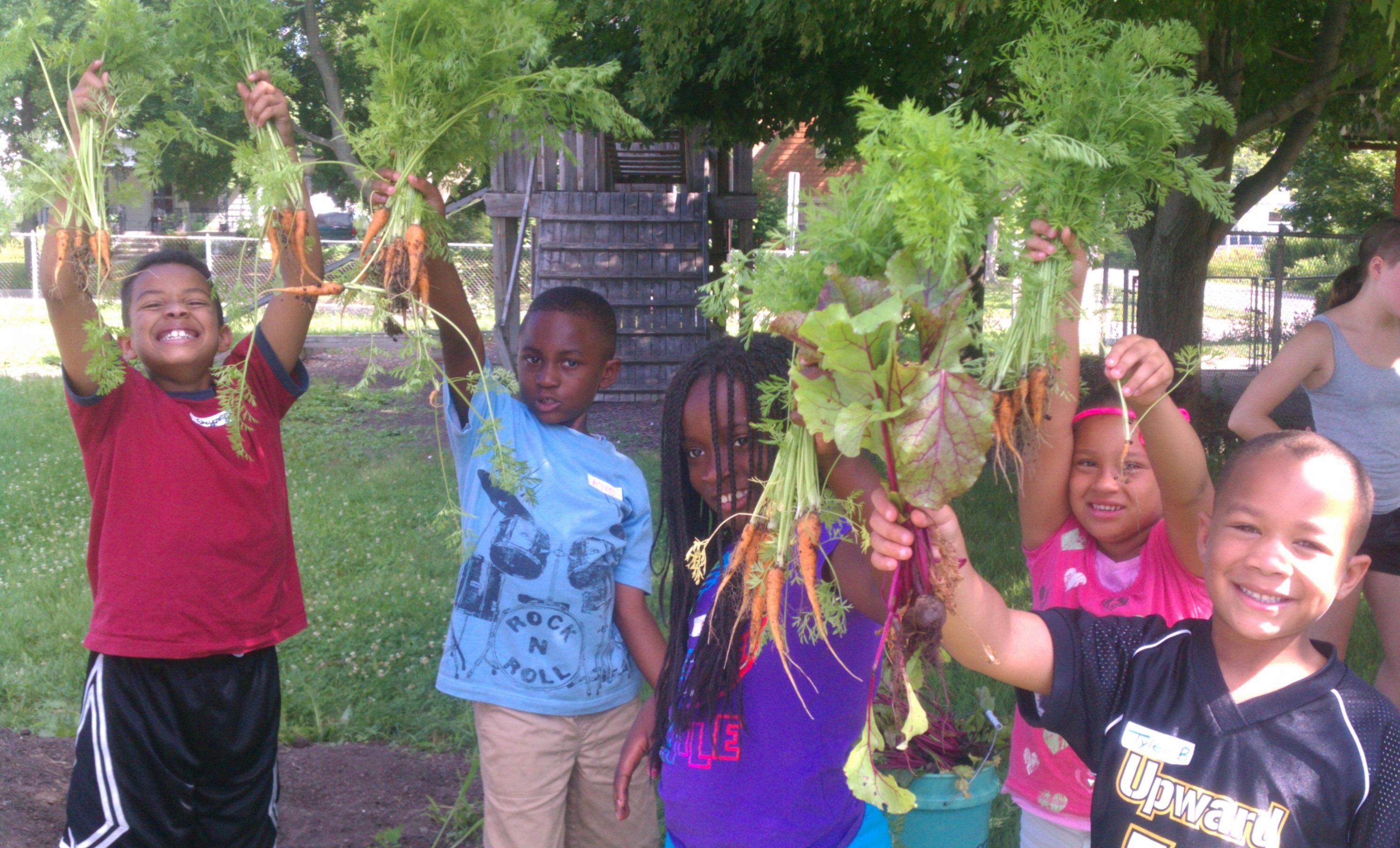 Food Systems Summer Internships