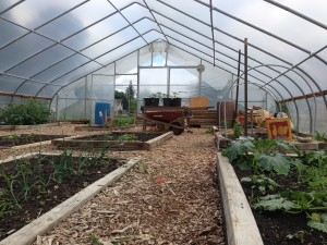 Riddle Hoophouse in early summer 2013.