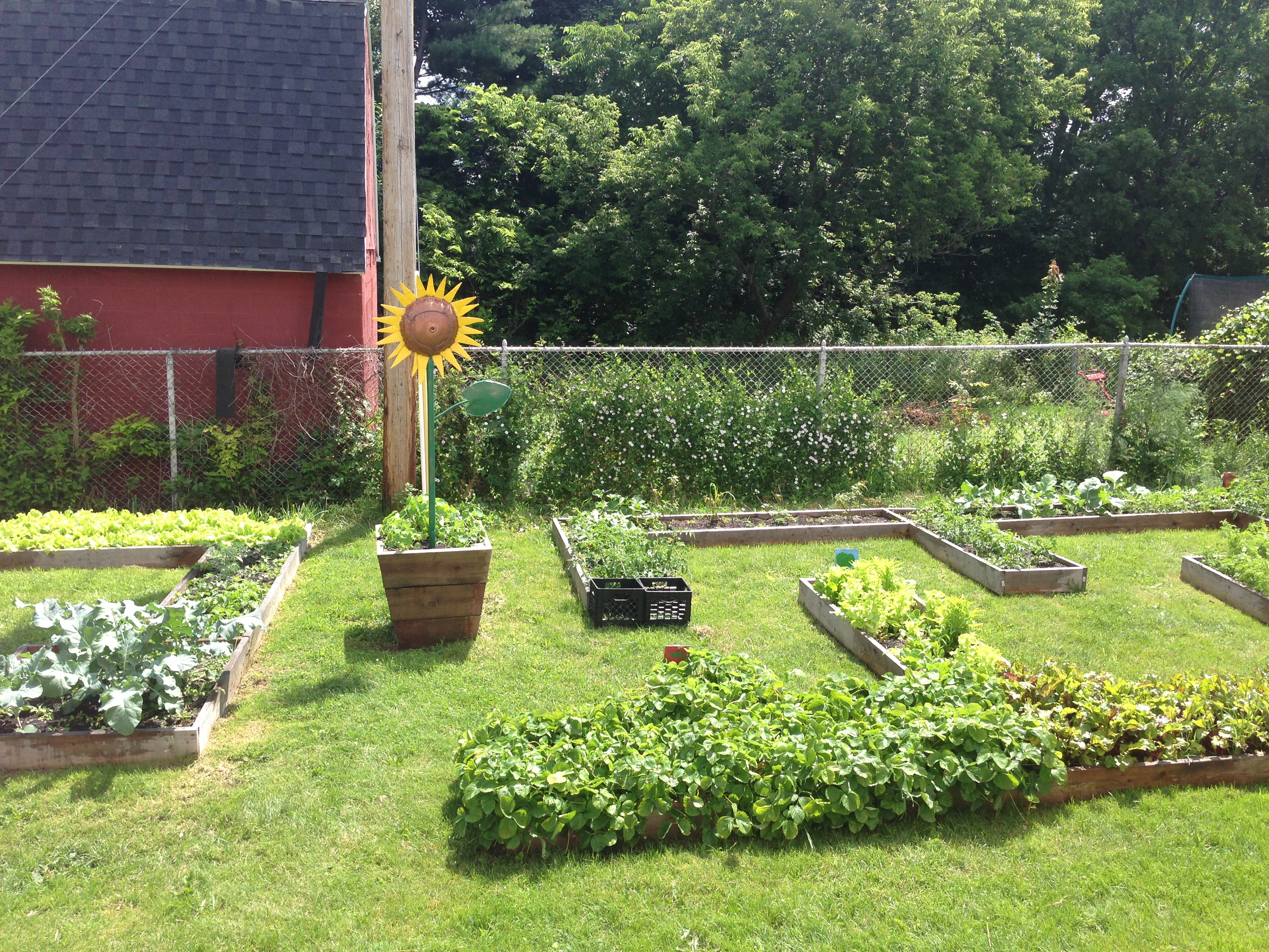 Food Systems Project Northwest Initiative